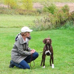 Immersion University: See the World Through a Dog's Eyes